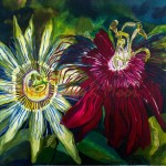 Passion Flower jao - 18 x 18 in. mounted on canvas (SOLD)